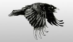   seriph   » raven tattoo