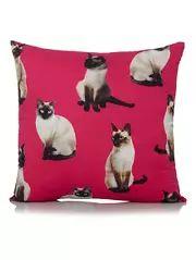 Bright Multi Cat Cushion