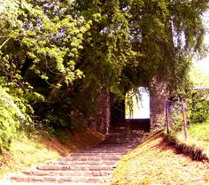 Dudley Castle, England