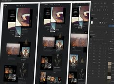 Adobe Photoshop (Elements) is a raster graphics editor for hobbyists and consumers. It includes most of the features of the professional version, but with fewer and simpler options. The programme enables users to create, edit, organise and share images.