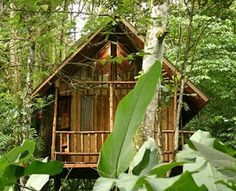 Tree House Lodge  Limón, Costa Rica  Why It's Unique: The 10-acre beachfront property, located in the Gandoca-Manzanillo Wildlife Refuge on Costa Rica's southern Caribbean coast, features a sustainably built treehouse made from fallen trees, with solar heating, two bedrooms, a kitchen, and a shower built around the crooks and roots of a massive 100-year-old Sangrillo tree.    Access: Hanging steel bridge.