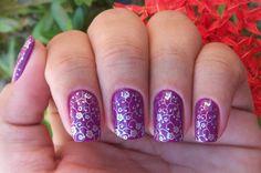Violettia ja kukkasia