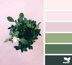 { botanical hues } image via: @heather_page