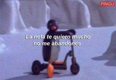 No tengo vida kok kok solo veo memes kok kok me quiero morir kok kok. Rikka And Yuuta, Pingu Memes, Cheesy Quotes, Spanish Phrases, Spanish Quotes, Cute Love Memes, Tumblr Love, Meme Faces, Love Messages