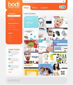 Bodi Design WordPress Themes by Mercury