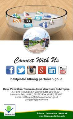 Balitjestro | Website dan Media Sosial Balitjestro
