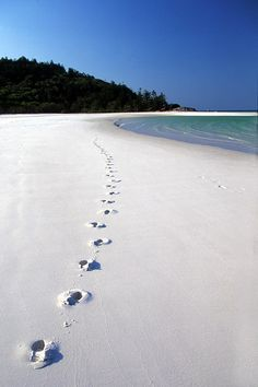 Whitehaven Beach #reservation #hotels