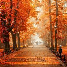 Krakowskie Planty - najpiękniejsze jesienią // Planty in Cracow - they look mostly charming at the autumn