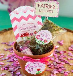 Fairy-Garden-Kits