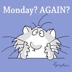 Monday again? How did that happen so fast? Monday Humor, Monday Quotes, Its Friday Quotes, Life Quotes, Good Morning Picture, Good Morning Good Night, Good Morning Quotes, Morning Memes, Funny Cartoons