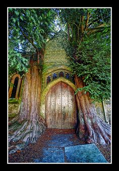The most amazing door! by Giorgos~ (moving to Google+), via Flickr