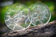 Náušnice zo živice so zaliatymi semenami púpavy. Priemer kruhu 4 cm.