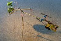 Artista brasileiro que faz arte interativa com natureza.