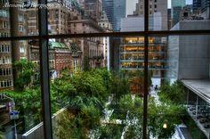 USA - New York City - Museum of Modern Art – MoMA