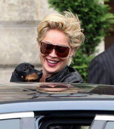 Sharon Stone and her doxie ♥♥♥ dauchshund dauchshunds weenier weeniers weenie weenies hot dog hotdogs doxie doxies ♥♥♥