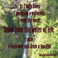 Drink from the Water of Life. Past Life Regression, Water Life, Mind Body Soul, I Smile, Mindful, Rainbows, Mists, Waterfall, Meditation