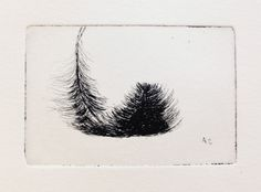 original etching of a feather St Cuthbert, Mirror Image, Rembrandt, Original Artwork, Feather, Delicate, Copper, Symbols, Ink