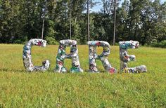 Through her VCFA educational progression and master's thesis project, Rachel Hatley (2013) established The Litter Letter Project as a response to the litter issue in Louisiana. It's a 3D messaging system of letters constructed from chicken wire and filled with litter found along the highway.