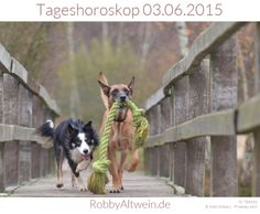 Tageshoroskop 03.06.2015- Robby Altwein