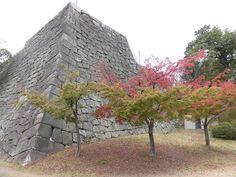 丸亀城 石垣 紅葉 2015.11.19
