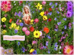 """Bloei van de eigen tuin – Maria's lente in de ziel:    """" Maria, Ik smeek u ,  herschep de tuin van mijn ziel , opdat ook ik volkomen in ..."""