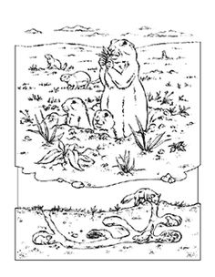 Prairie Dog pattern Use the printable outline for crafts