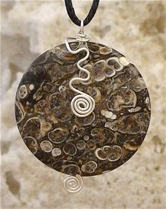 Simple Sensation - Turritella Fossil Agate & Sterling Silver (Customer Design) - Lima Beads