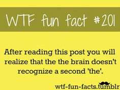 MORE OF WTF-FUN-FACTS ARE COMING HERE funny and weird facts ONLY (I didn't see it!)