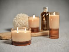 Candles & Home fragrance | zodax Best Smelling Candles, Earthy, Candle Jars, Raspberry, Wax, Fragrance, Home, Decor, Decoration