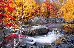 The Best Places to Enjoy the Stunning Beauty of Fall | Urban News, Deals, Stories and Gossips