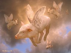 When pigs fly....