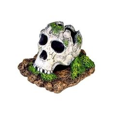 Amazon.com: Resin Ornament - Broken Skull - Small (Catalog Category: Aquarium / Resin Ornaments): Pet Supplies