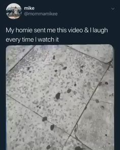 Funny video memes - That's not funny😂 Stupid Funny, Funny Cute, Haha Funny, Really Funny, Hilarious, Funny Stuff, Lol, Funny Video Memes, Funny Clips