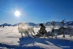 なぜ寒さを耐えて、住み続けるのか 気温-70℃!世界で最も寒いロシアの街「オイミャコン」に人が住む理由