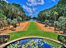 The Majorelle garden, Morocco
