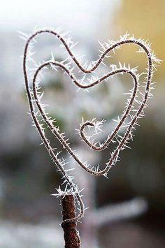 Domandarsi perché quando cade la tristezza in fondo al cuore come la neve non fa rumore.  ✿ Lucio Battisti