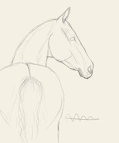 馬 - Trend Pencil Drawings 2020 Horse Drawings, Pencil Art Drawings, Realistic Drawings, Cartoon Drawings, Cute Drawings, Drawing Sketches, Drawing Ideas, Horse Head Drawing, Easy Animal Drawings