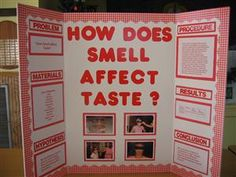 High School Science Fair Projects | This creative third grader snagged a science fair ribbon for a simple ...