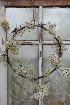 Wreath with beautiful seed fluff (clematis)? - Wreath with beautiful seed fluff (clematis)? Summer Door Wreaths, Christmas Wreaths, Christmas Decorations, Clematis, Corona Floral, Deco Nature, Host Gifts, Wreaths And Garlands, Year Round Wreath