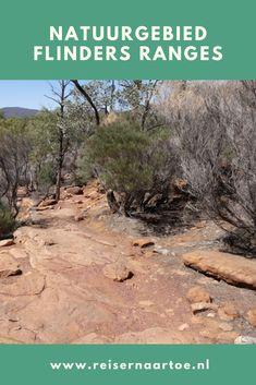 De Flinders Ranges is een grote bergketen in de staat Zuid-Australië. Het natuurgebied begint ongeveer 200 km boven de hoofdstad Adelaide en strekt zich 430 km naar het noorden uit. Een prachtig landschap!  #reisblog #reisinspiratie #reizen Range, Cookers