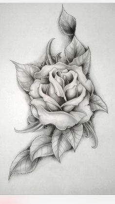Tattoo- thigh/hip-rose