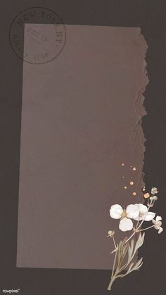 phone wallpaper plain handyhintergrundbild Bulltongue arrowhead pattern mobile p… - Modern Framed Wallpaper, Flower Background Wallpaper, Cute Wallpaper Backgrounds, Flower Backgrounds, Textured Background, Cute Wallpapers, Iphone Wallpaper, Plain Wallpaper, Interesting Wallpapers