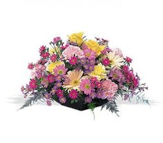 Order Garden Centerpiece from The Orchid Florist, your local Waterbury florist. For fresh and fast flower delivery throughout Waterbury, CT area. Buy Flowers Online, Order Flowers, Flower Centerpieces, Flower Arrangements, Centerpiece Ideas, Cheap Flowers, Pastel Flowers, Colorful Flowers, Anniversary Flowers