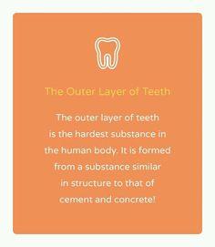 La parte externa de los dientes (esmalte) es la parte mas dura del cuerpo pero a la vez es frágil por sustancias minerales. Esta formada de una sustancia similar en estructura al cemento o concreto. #dentalfact#dentalblog#dentistrylife #dentistrylover #saludbucal#oralhealth#dentistaentegucigalpa by dentistblog Our Dental Services Page: http://www.myimagedental.com/services/ Google My Business: https://plus.google.com/ImageDentalStockton/about Our Yelp Page…