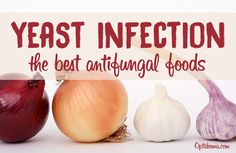 Did you know that antifungal foods can prevent and cure Candida? Learn what to eat and other natural means to combat yeast infection. Say Adiós to Candida!