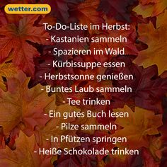 Weather Forecast and Forecast November 2019 - Trend Lightworker Quotes 2019 Living Your Life Quotes, Work Life Quotes, Live Quotes For Him, Life Quotes Family, You Can Do It Quotes, Life Is Too Short Quotes, Deep Quotes About Love, Positive Quotes For Life, Inspiring Quotes About Life