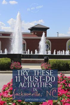 Try These 11 Must-Do Activities in Jacksonville, NC