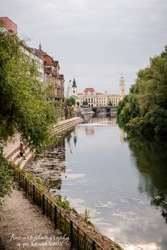 Oradea, Romania, a beautiful city, full of history. Places Around The World, Travel Around The World, Around The Worlds, Bucharest, Terra, Homeland, British Columbia, Croatia, Scotland