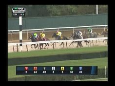 2014 Frizette Stakes