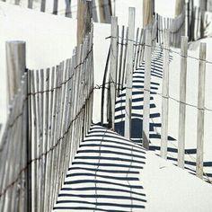 shadowy stripes